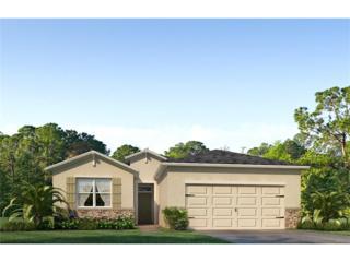 10613 Scenic Hollow Drive, Riverview, FL 33578 (MLS #T2874604) :: The Duncan Duo & Associates