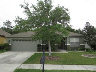 6830 Pine Springs Drive, Wesley Chapel, FL 33545 (MLS #T2874606) :: The Duncan Duo & Associates