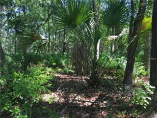 Lot 22 Lake Hills Drive, Riverview, FL 33569 (MLS #T2874629) :: The Duncan Duo & Associates