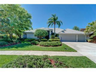 14210 Banbury Way, Tampa, FL 33624 (MLS #T2874674) :: The Duncan Duo & Associates