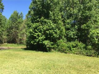 Lot 20 Lake Hills Drive, Riverview, FL 33569 (MLS #T2874677) :: The Duncan Duo & Associates
