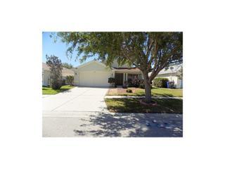 11607 Baylor Court, Riverview, FL 33569 (MLS #T2874891) :: The Duncan Duo & Associates