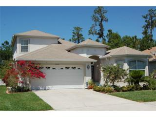 27243 Edenfield Drive, Wesley Chapel, FL 33544 (MLS #T2875107) :: The Duncan Duo & Associates