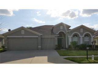 6719 Pine Springs Drive, Wesley Chapel, FL 33545 (MLS #T2875110) :: The Duncan Duo & Associates