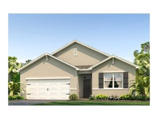 10662 Park Meadowbrooke Drive, Riverview, FL 33578 (MLS #T2875390) :: The Duncan Duo & Associates