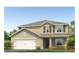 10663 Park Meadowbrooke Drive, Riverview, FL 33578 (MLS #T2875401) :: The Duncan Duo & Associates