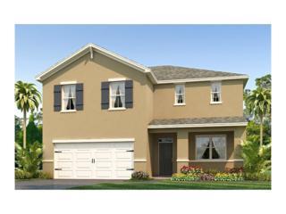 10660 Park Meadowbrooke Drive, Riverview, FL 33578 (MLS #T2875411) :: The Duncan Duo & Associates