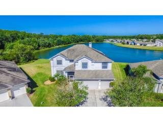 4547 Roslyn Court, Land O Lakes, FL 34639 (MLS #T2875432) :: The Duncan Duo & Associates