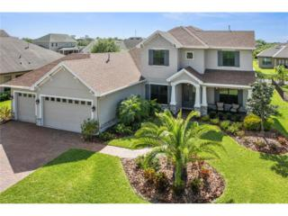 5907 Alana Leigh Place, Lithia, FL 33547 (MLS #T2875488) :: The Duncan Duo & Associates