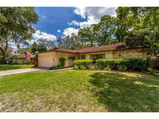 2303 Willow Branch Avenue, Lutz, FL 33549 (MLS #T2875629) :: The Duncan Duo & Associates