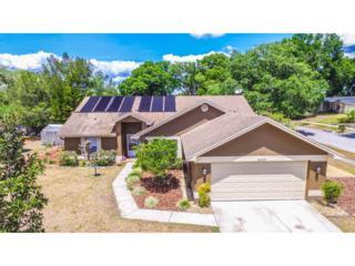 24203 Hampton Place, Lutz, FL 33559 (MLS #T2875702) :: The Duncan Duo & Associates