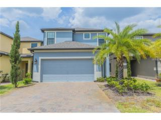 2725 Garden Falls Drive, Brandon, FL 33511 (MLS #T2875762) :: The Duncan Duo & Associates