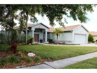 22804 Willow Lakes Drive, Lutz, FL 33549 (MLS #T2875842) :: The Duncan Duo & Associates