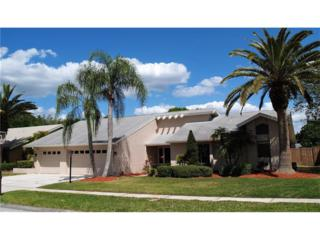 13717 Attley Place, Tampa, FL 33624 (MLS #T2875863) :: The Duncan Duo & Associates