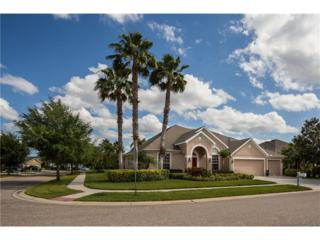 12302 Silton Peace Drive, Riverview, FL 33579 (MLS #T2875864) :: The Duncan Duo & Associates