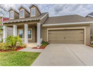 5904 Jasper Glen Drive, Lithia, FL 33547 (MLS #T2875951) :: The Duncan Duo & Associates