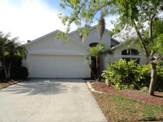 9953 Stockbridge Drive, Tampa, FL 33626 (MLS #T2875958) :: The Duncan Duo & Associates