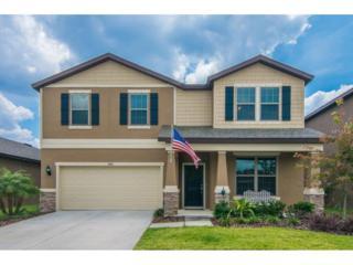 9013 Mountain Magnolia Drive, Riverview, FL 33578 (MLS #T2876162) :: The Duncan Duo & Associates