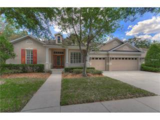 5808 Terncrest Drive, Lithia, FL 33547 (MLS #T2876212) :: The Duncan Duo & Associates
