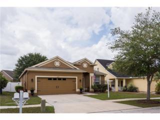 12627 Bramfield Drive, Riverview, FL 33579 (MLS #T2876227) :: The Duncan Duo & Associates