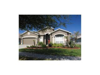 6009 Martinglade Place, Lithia, FL 33547 (MLS #T2876262) :: The Duncan Duo & Associates