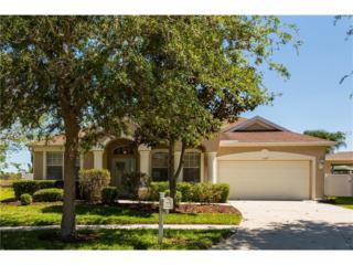 11427 Newgate Crest Drive, Riverview, FL 33579 (MLS #T2876276) :: The Duncan Duo & Associates