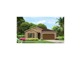 4027 Aldea Way, Wesley Chapel, FL 33543 (MLS #T2876457) :: The Duncan Duo & Associates