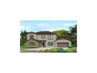 18007 Pine Hammock Boulevard, Lutz, FL 33548 (MLS #T2876471) :: The Duncan Duo & Associates