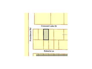11101 Crescent Lake Drive, Riverview, FL 33578 (MLS #T2876544) :: The Duncan Duo & Associates
