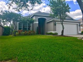 9807 Bayboro Bridge Drive, Tampa, FL 33626 (MLS #T2876672) :: The Duncan Duo & Associates