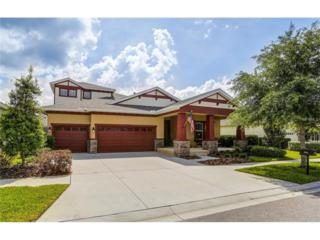 5210 Rosefinch Place, Lithia, FL 33547 (MLS #T2876796) :: The Duncan Duo & Associates