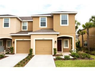 6946 Towne Lake Road, Riverview, FL 33578 (MLS #T2876821) :: The Duncan Duo & Associates