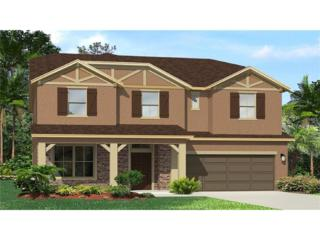 4548 Pensford Court, Wesley Chapel, FL 33543 (MLS #T2876954) :: The Duncan Duo & Associates