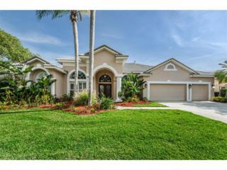 12007 Marblehead Drive, Tampa, FL 33626 (MLS #T2877068) :: The Duncan Duo & Associates