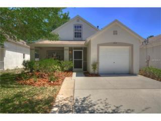 6014 Kiteridge Drive, Lithia, FL 33547 (MLS #T2877173) :: The Duncan Duo & Associates