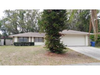 705 Isleton Drive, Brandon, FL 33511 (MLS #T2877357) :: The Duncan Duo & Associates