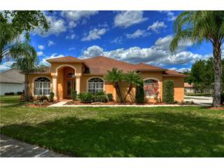 19503 French Lace Drive, Lutz, FL 33558 (MLS #T2877376) :: The Duncan Duo & Associates