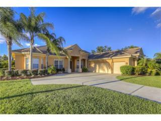 9902 Emerald Links Drive, Tampa, FL 33626 (MLS #T2877413) :: The Duncan Duo & Associates