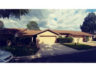 4052 Shoreside Circle, Tampa, FL 33624 (MLS #T2877499) :: The Duncan Duo & Associates