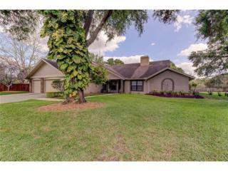 18250 Clear Lake Drive, Lutz, FL 33548 (MLS #T2877648) :: The Duncan Duo & Associates