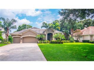 1204 Oxbridge Drive, Lutz, FL 33549 (MLS #T2877659) :: The Duncan Duo & Associates