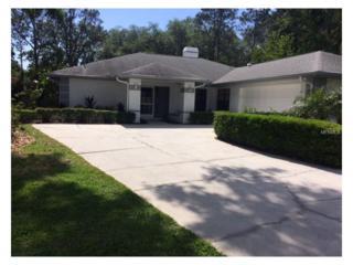 14024 Ellesmere Drive, Tampa, FL 33624 (MLS #T2877734) :: The Duncan Duo & Associates