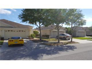31000 Whitlock Drive, Wesley Chapel, FL 33543 (MLS #T2877761) :: The Duncan Duo & Associates