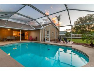 9719 Glenpointe Drive, Riverview, FL 33569 (MLS #T2877834) :: The Duncan Duo & Associates
