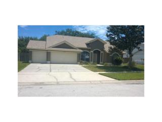 9706 Sunnyoak Drive, Riverview, FL 33569 (MLS #T2877835) :: The Duncan Duo & Associates