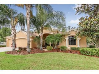 2741 Lake Valley Place, Wesley Chapel, FL 33544 (MLS #T2878019) :: The Duncan Duo & Associates