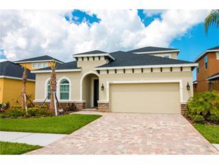 5030 Inshore Landings Drive, Apollo Beach, FL 33572 (MLS #T2878025) :: Alicia Spears Realty