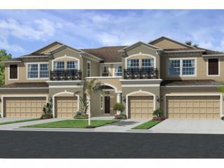 30289 Southwell Lane, Wesley Chapel, FL 33543 (MLS #T2878088) :: The Duncan Duo & Associates