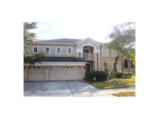 11427 Blue Lilac Avenue, Riverview, FL 33578 (MLS #T2878139) :: The Duncan Duo & Associates