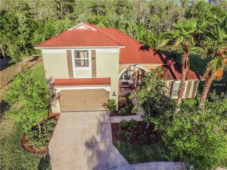8003 Hampton Glen Dr, Tampa, FL 33647 (MLS #T2878168) :: The Duncan Duo & Associates